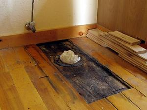 pleśń pod podłogą
